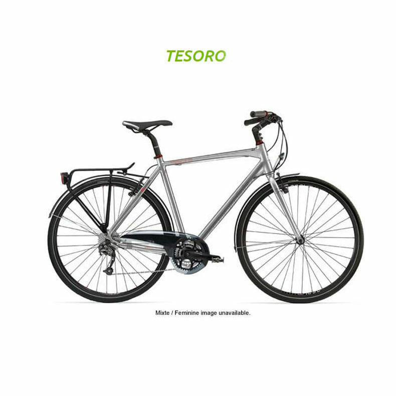 Rent-a-Cannondale-Touring-Bike-Tesoro